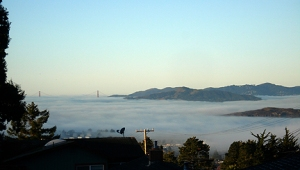 Fog over San Francisco Bay